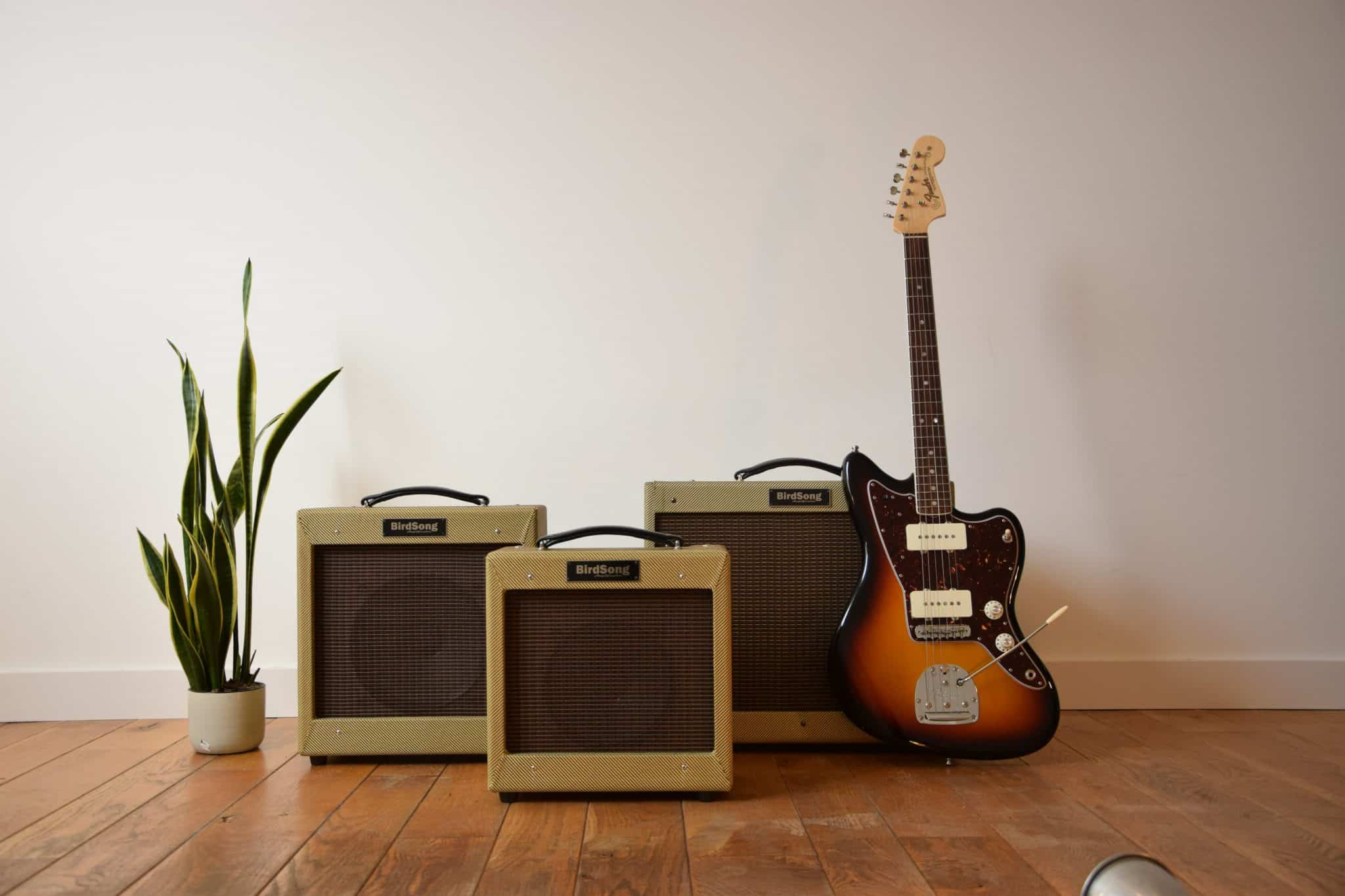 Boutique guitar amplifiers BirdSong Boutique guitar amplifiers BirdSong Champ princeton tweed deluxe